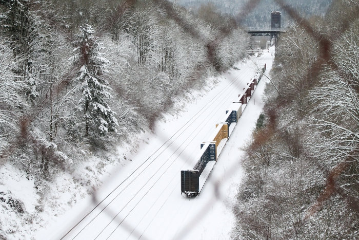 Snow-covered train