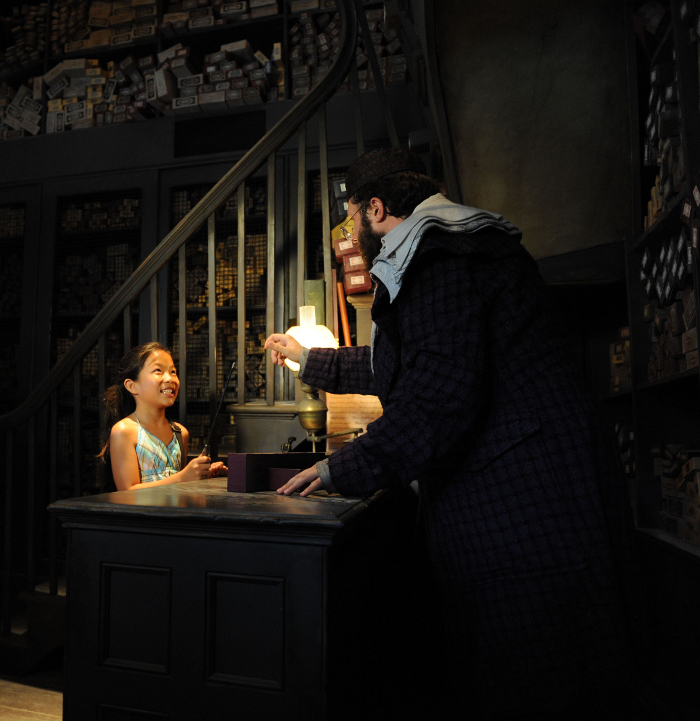 Diagon Alley Vacation Packages-Now-Available